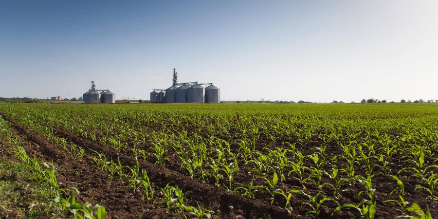 Campo-de-lavoura-com-industria-ao-fundo-para-ilustrar-artigo-sobre-agronegocio